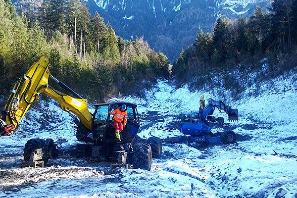 Schreitbagger bei Forstarbeiten